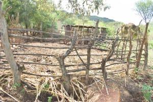 The Water Project: Kithumba Community D -  Livestock Pen
