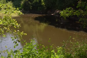 The Water Project: Wamwathi Community A -  Seaonal Open Water Source