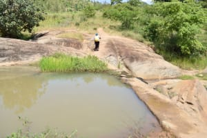 The Water Project: Kyamwao Community A -  Returning Home With Water