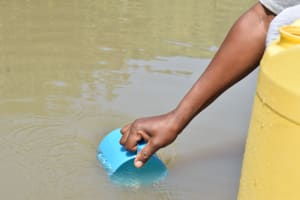 The Water Project: Kyamwao Community A -  Scooping Water