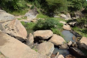 The Water Project: Kyamwao Community A -  Water Source