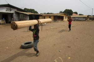 The Water Project: Lungi, 25 Maylie Lane -  Laborers Carrying Wood