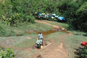 The Water Project: Lwanga Itulubini Primary School -  At The Spring