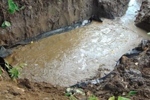 The Water Project: Kambiri Community, Sachita Spring -  Spring Foundation