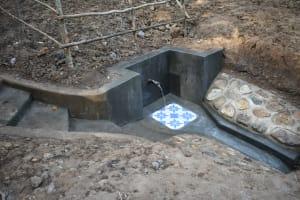 The Water Project: Emukoyani Community, Ombalasi Spring -  Finished Spring