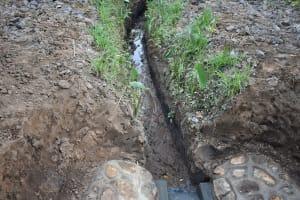The Water Project: Emukoyani Community, Ombalasi Spring -  Drainage The Community Dug