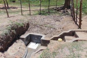 The Water Project: Sambuli Community, Nechesa Spring -  Flowing Water