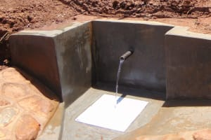 The Water Project: Ibinzo Community, Lucia Spring -  Finished Spring Protection