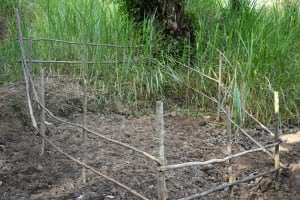 The Water Project: Emukoyani Community, Ombalasi Spring -  Fence To Protect The Spring Box