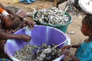 The Water Project: Kamayea, Susu Community & Church -  Woman Processing Seashells