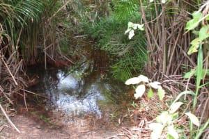The Water Project: Lokomasama, Musiya, Nelson Mandela Secondary School -  Main Water Source