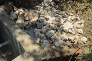 The Water Project: Mukhuyu Community, Kwawanzala Spring -  Spring Backfilling