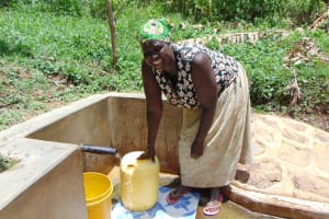 The Water Project: Ivulugulu Community, Ishangwela Spring -  Dora Mukabi