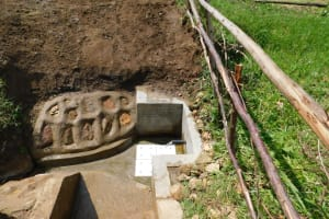 The Water Project: Sambuli Community, Nechesa Spring -  Water Flowing In June