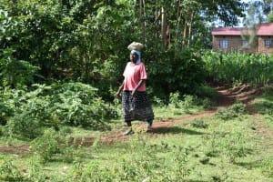 The Water Project: Ataku Community, Ngache Spring -  Bringing Stones