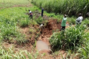 The Water Project: Ataku Community, Ngache Spring -  Excavation Begins