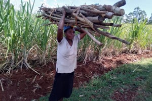 The Water Project: Emulembo Community, Gideon Spring -  Carrying Firewood