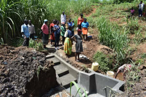 The Water Project: Ataku Community, Ngache Spring -  Site Management