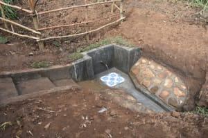 The Water Project: Ataku Community, Ngache Spring -  Completed Spring