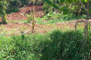 The Water Project: Emulembo Community, Gideon Spring -  Farm