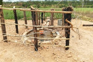 The Water Project: Kimigi Kyamatama Community -  Cement Dries At The Well Pad