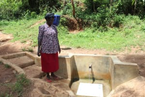 The Water Project: Malava Community, Ndevera Spring -  Margaret Jumba Muyale Spring Landowner