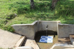The Water Project: Indete Community, Udi Spring -  Udi Spring Green With Grass