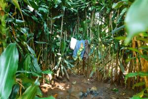 The Water Project: Ewamakhumbi Community, Mukungu Spring -  Bathing Area