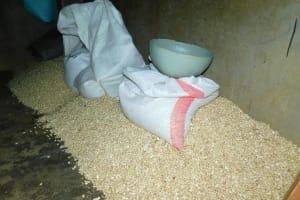 The Water Project: Kapkures Primary School -  Schools Grain Store