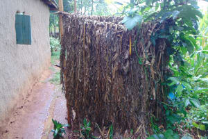 The Water Project: Emurumba Community, Makokha Spring -  Bathroom Of Banana Leaves