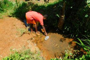 The Water Project: Ewamakhumbi Community, Mukungu Spring -  Mukungu Spring