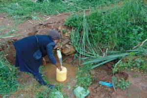 The Water Project: Namarambi Community, Iddi Spring -  Fetching Water