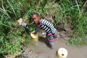 The Water Project: Bukhaywa Community, Shidero Spring -  Filling Up