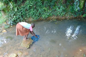 The Water Project: Bukhaywa Community, Ashikhanga Spring -  Submerging Containers To Fill