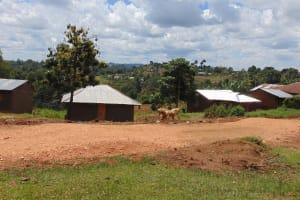 The Water Project: Kimarani Community, Kipsiro Spring -  Households In The Community