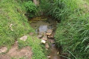 The Water Project: Kalenda B Community, Lumbasi Spring -  Unprotected Lumbasi Spring