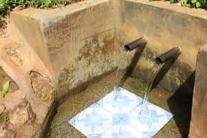 The Water Project: Jivovoli Community, Wamunala Spring -  Wamunala Spring