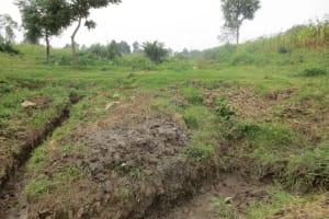 The Water Project: Sambaka Community, Sambaka Spring -  Nzoia Community Land