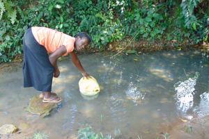 The Water Project: Bukhaywa Community, Ashikhanga Spring -  Carolyne Makhavali Fetches Water