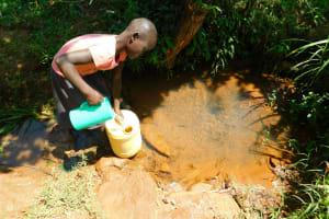 The Water Project: Ewamakhumbi Community, Mukungu Spring -  Fetching Water