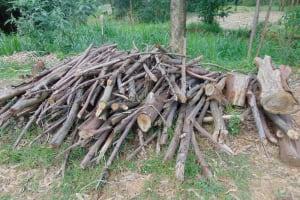 The Water Project: Bukhaywa Community, Ashikhanga Spring -  Stack Of Firewood