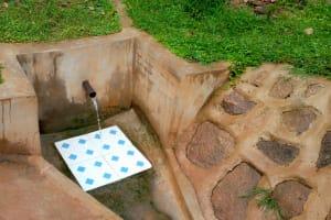 The Water Project: Chandolo Community, Joseph Ingara Spring -  Joseph Ingara Spring Green With Grass