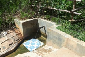 The Water Project: Elukani Community, Ongari Spring -  Ongari Spring Green With Grass