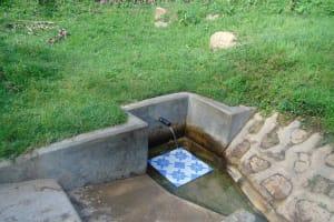 The Water Project: Ejinja Community, Anekha Spring -  Anekha Spring Green With Grass