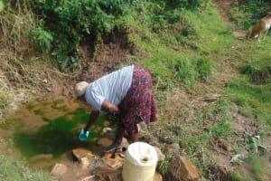The Water Project: Mukangu Community, Metah Spring -  Selestine Lusimba Spring Landowner Fetching Water