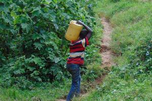 The Water Project: Kimarani Community, Kipsiro Spring -  Carrying Water Homejpg