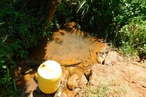 The Water Project: Ewamakhumbi Community, Mukungu Spring -  Unprotected Mukungu Spring