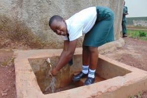 The Water Project: Kwirenyi Secondary School -  Nicorine Shitamu At Rain Tank