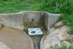 The Water Project: Ulagai Community, Aduda Spring -  Aduda Spring Green With Grass