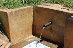 The Water Project: Jivovoli Community, Gideon Asonga Spring -  Gideon Asonga Spring